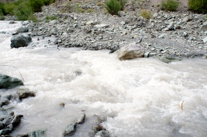 streams to wade through